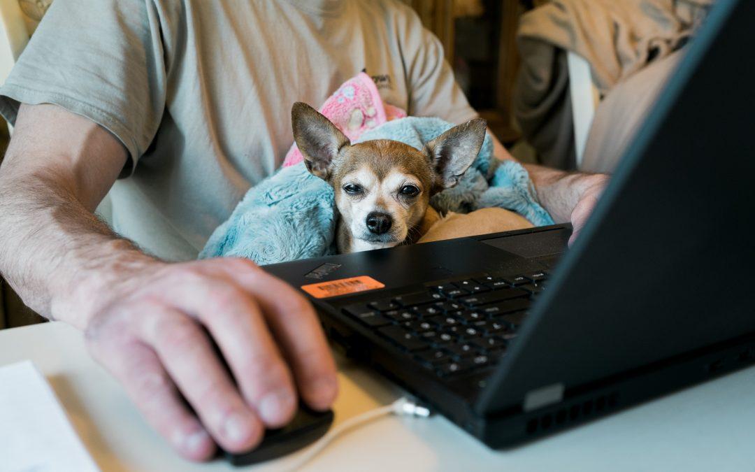 Gérer le nouveau normal: Remote et vie au travail à l'ère du  COVID  (partie 1)